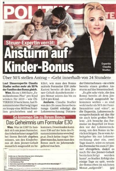 cSt causa in der Tageszeitung Österreich